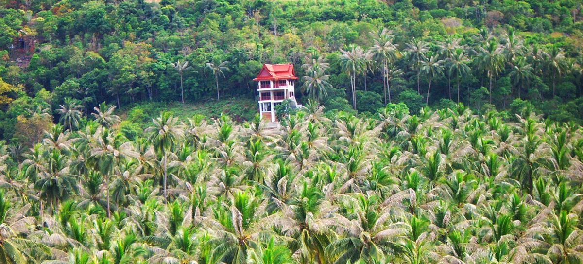 Beste Koh Samui Tipps: Die unbekannte Seite von der Palmeninsel entdecken.