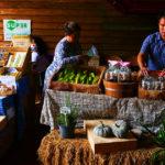 Thailand-Lifestyle.com: Khao Yai Farm Tour mit Nathalie Gütermann