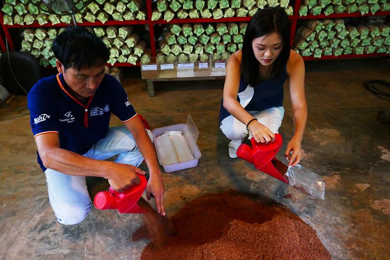 Thailand-Lifestyle.com mit Nathalie Gütermann: Pilzzucht auf der Khao Yai Panorama Farm