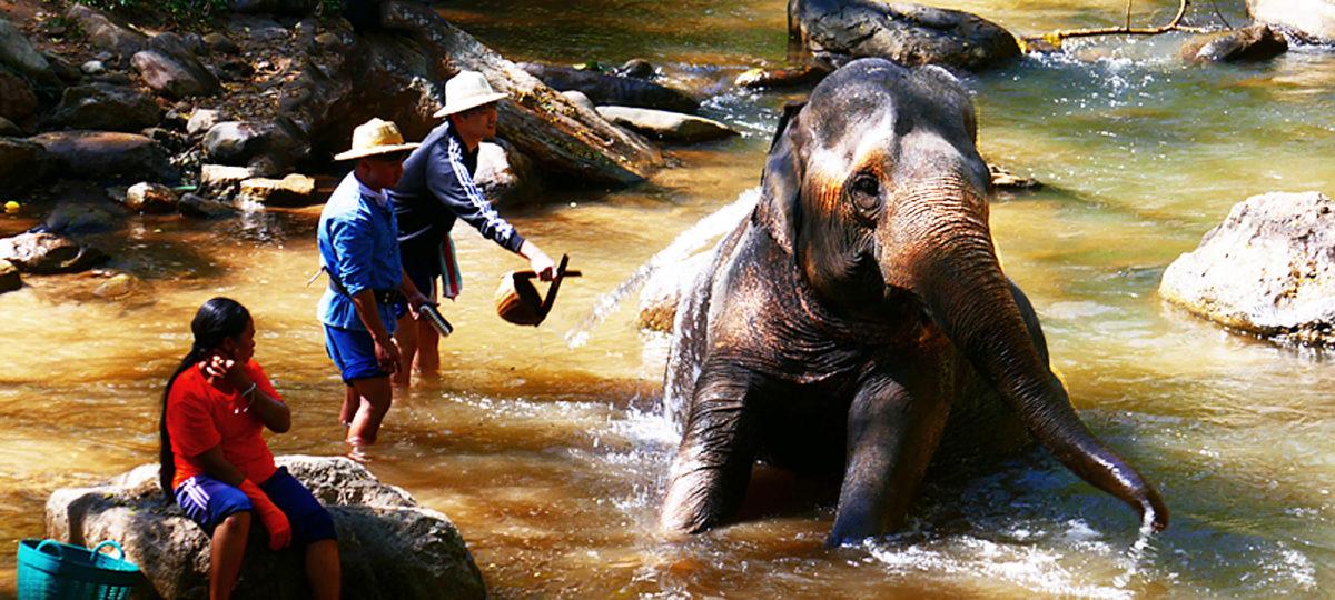 Chiang Mai Ausflug (1): Bergwelt von Moncham