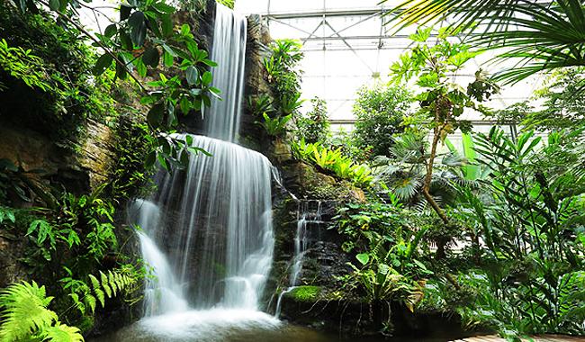 """Thailand Lifestyle präsentiert: Queen Sirikit Botanic Garden. Hier: Der """"Glasshouse Complex"""""""