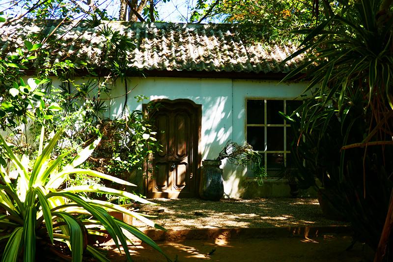 Das Atelier des Künstlers im verwunschen anmutenden Dschungel-Park.